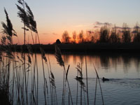 fabulous sunsets over the reed beds on the Norfolk Broads